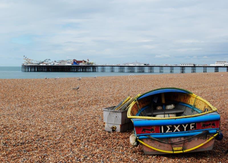 Brighton Beach Gaviota imagen de archivo
