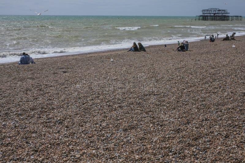 Brighton, l'Inghilterra, il Regno Unito - un Pebble Beach e un pilastro fotografia stock libera da diritti