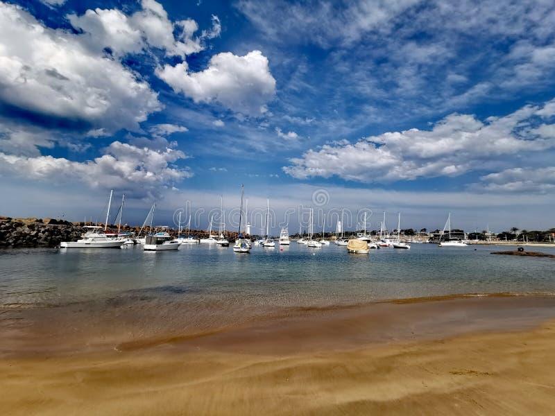 Brighton plaża, Wollongong NSW Australia obraz royalty free