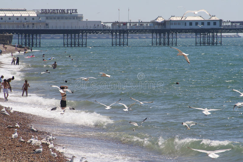 Brighton-Strand und Pier stockfotos
