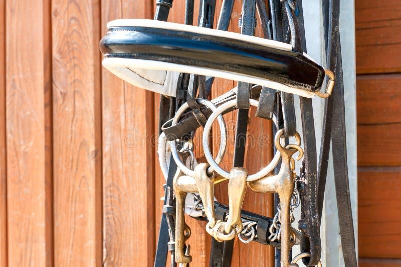 Briglia del cavallo che appende sulla porta di legno stabile Primo piano all'aperto fotografia stock