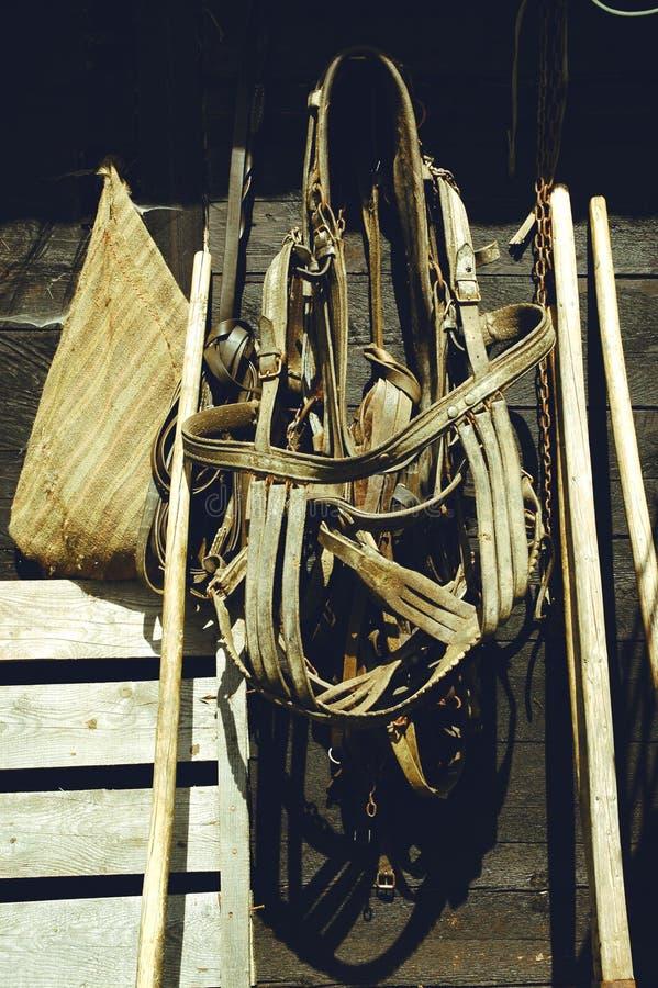 Briglie di cuoio e cablaggio del cavallo che appendono sulla parete fotografie stock libere da diritti