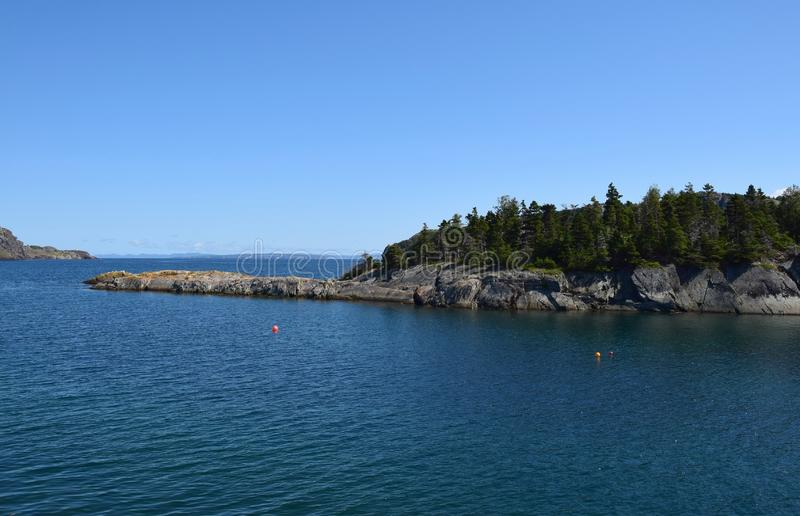 Brigus,构想海湾海岸线NL加拿大 免版税库存图片