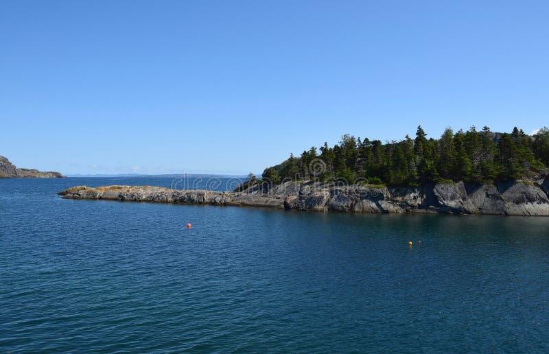 Brigus befruktningfjärdkustlinje NL Kanada royaltyfria bilder