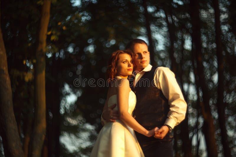 Brilhante e borrado - os pares do casamento mantêm seu st das mãos unido imagens de stock