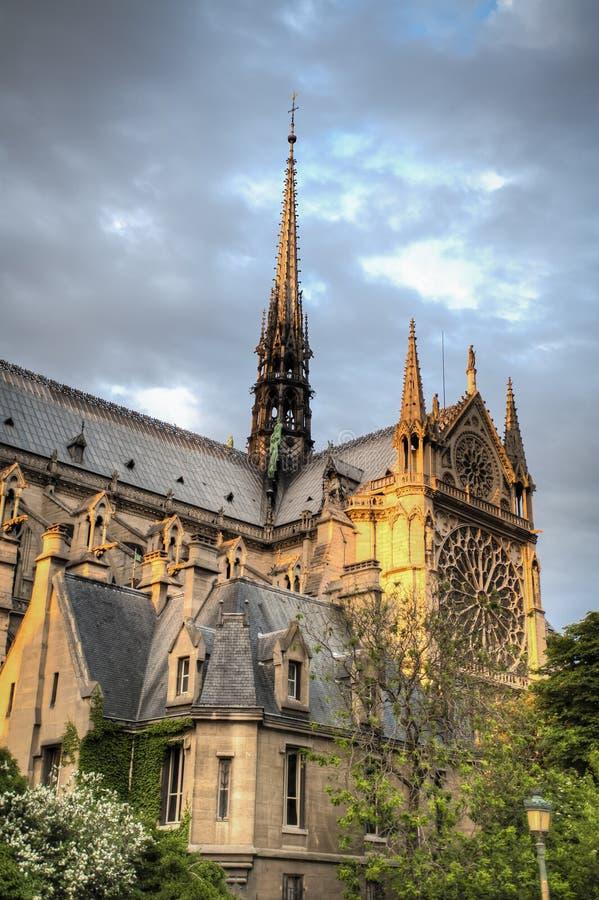 Download Luz da noite em Notre Dame foto de stock. Imagem de france - 29832426