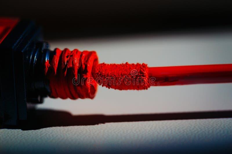 Brilho vermelho do bordo do encanto fotografia de stock