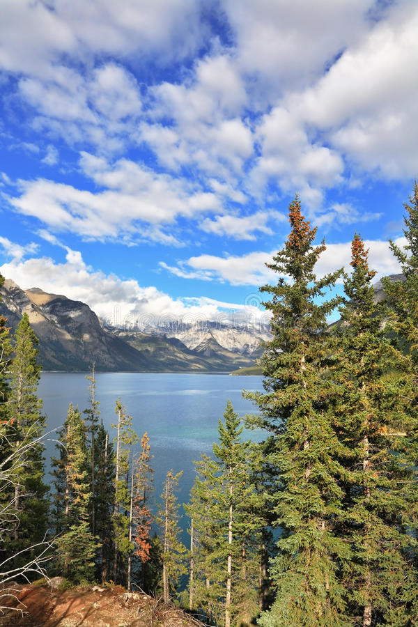 Brilliant Bow Lake and the mountain stock photography