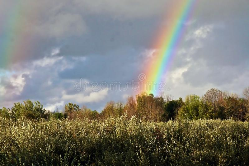 Brilliant Rainbow over an autumn field in Michigan royalty free stock images