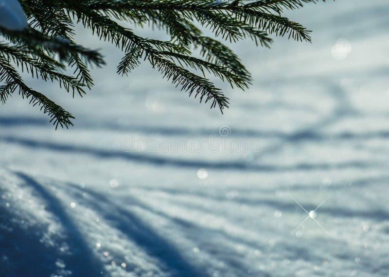 Brillos de la nieve de marzo imágenes de archivo libres de regalías