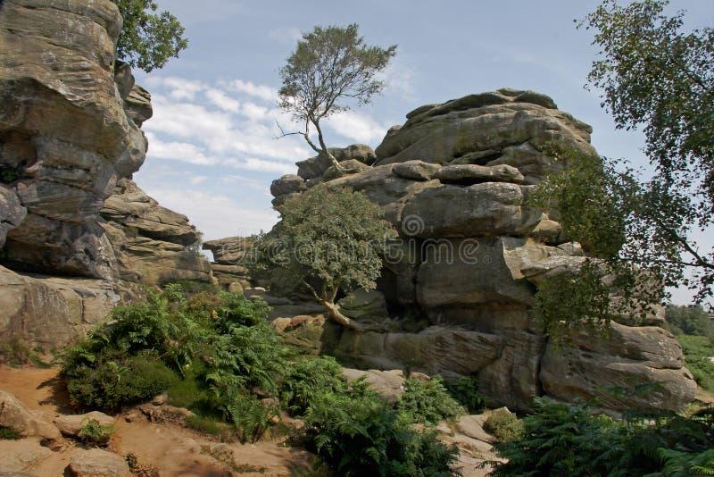 brimham βράχοι Γιορκσάιρ στοκ εικόνες