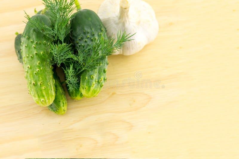 Brin culinaire de concombres de légumes frais de fond de la conservation de fruit de marinovka de billette d'ail d'aneth images libres de droits