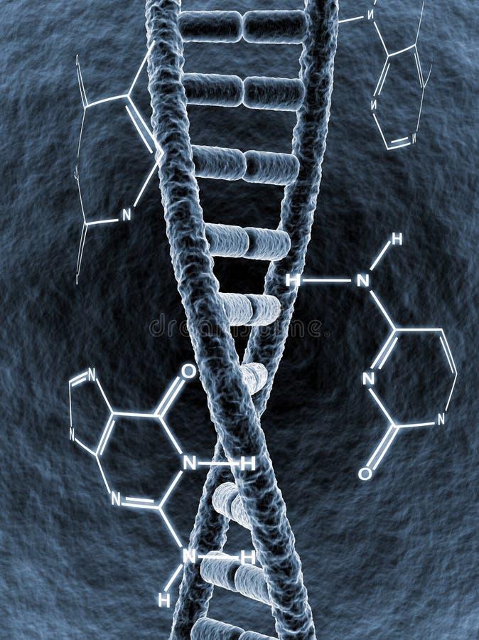 Brin d'ADN illustration stock