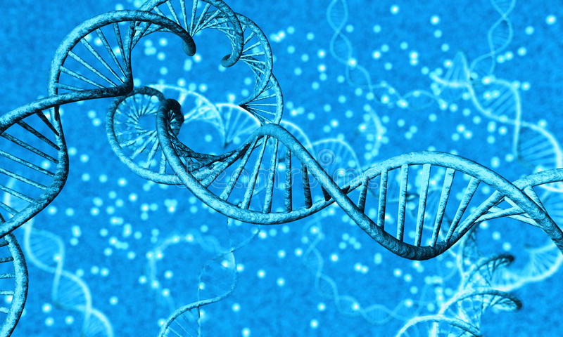 Brin d'ADN - 3 photo stock