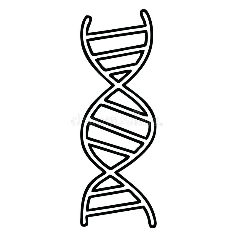 brin d'ADN de bande dessin?e de dessin au trait illustration libre de droits