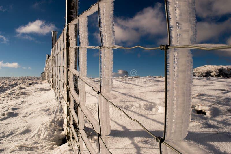 Brina del ghiaccio fotografia stock