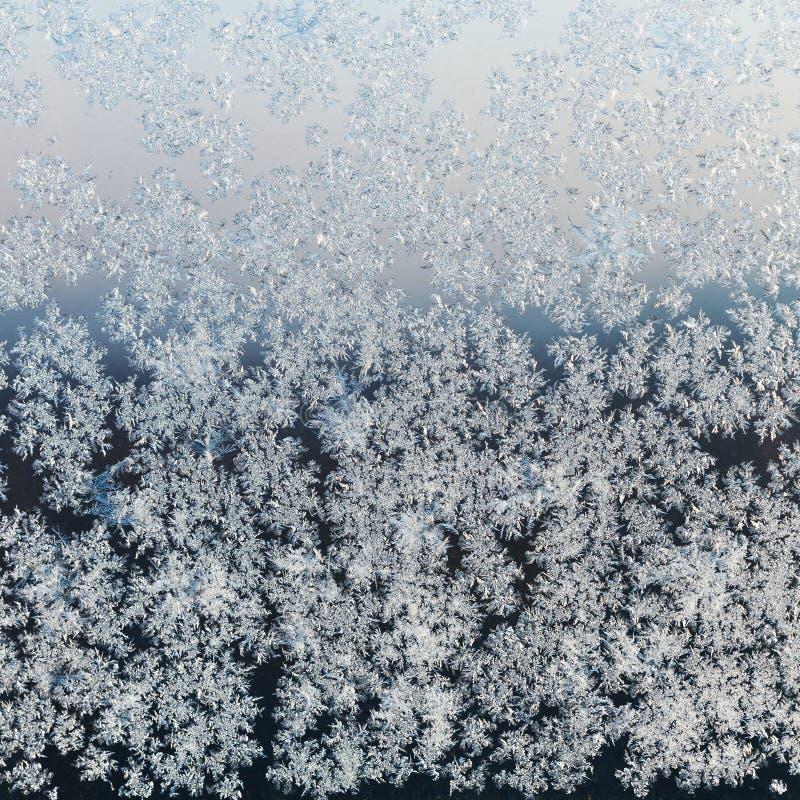 Brina sul vetro di finestra sulla sera di inverno fotografie stock libere da diritti