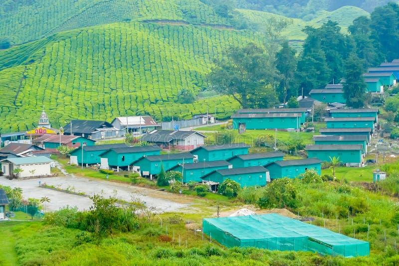 Brinchangdorp in Cameron Valley van theeaanplantingen Maleisië stock foto