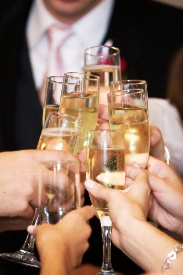 Brinde do vinho fotos de stock royalty free