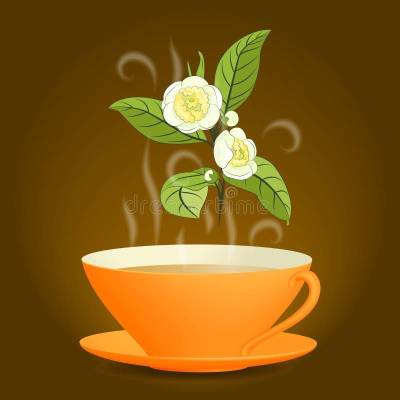 Brindille de camélia et tasse orange de thé illustration stock