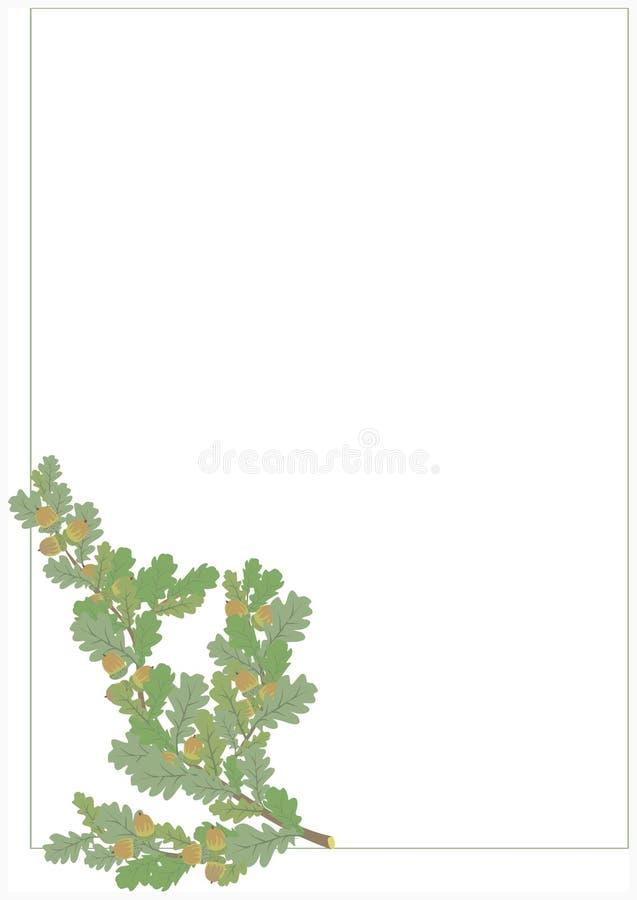 Brindille de chêne illustration de vecteur