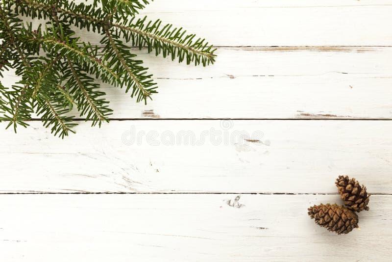 Brindille et cônes à feuilles persistantes de sapin sur le fond en bois photos libres de droits