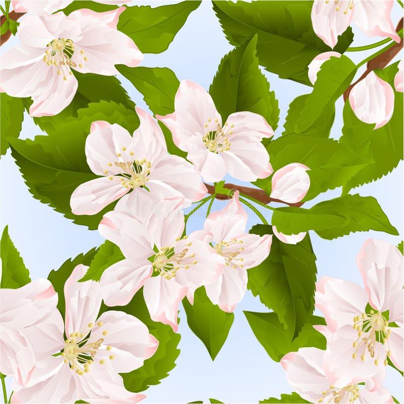 Brindille sans couture de texture de pommier avec l'illustration bleue de vecteur de vintage de fond de fleurs editable illustration libre de droits