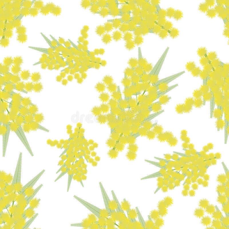 Brindilles de mimosa sans couture illustration stock