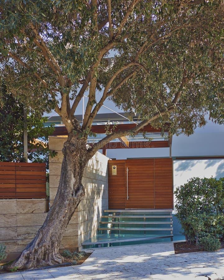 Bringen Sie Eingang mit Olivenbaum und Wasserpool, Athen Griechenland unter stockbild