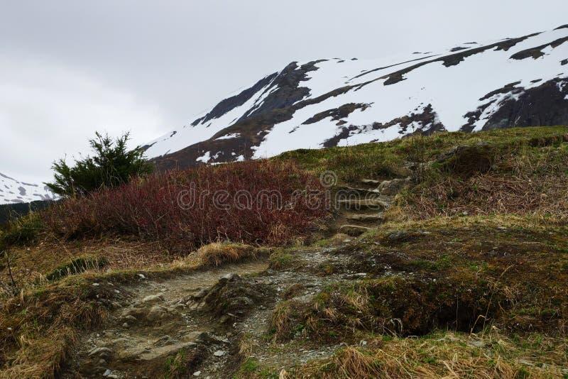 Bringen Sie Roberts Trail mit kleiner Treppe, Juneau, Alaska an stockfoto
