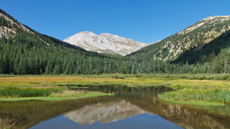 Berg Yale, der im Mountainsee sich reflektiert lizenzfreies stockfoto