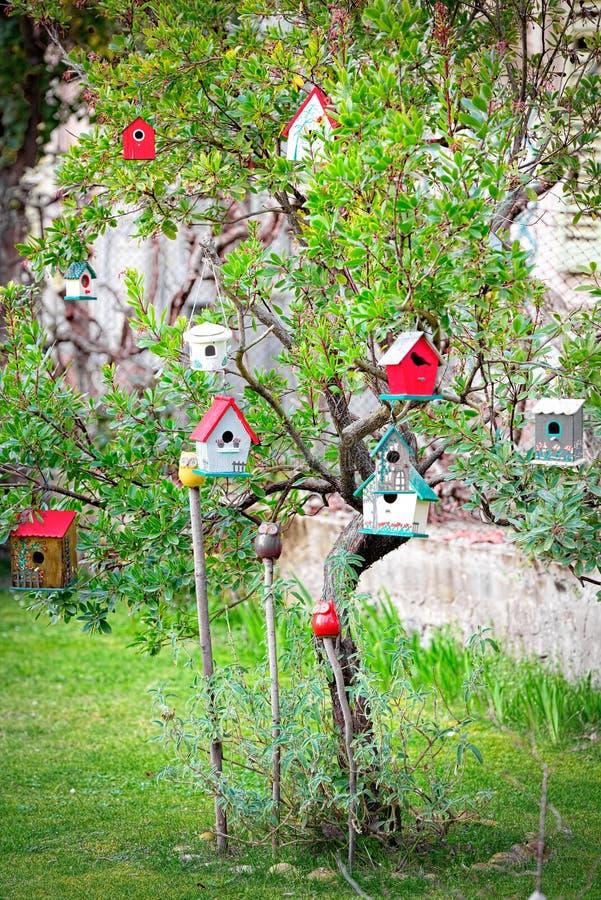 Bringt hängenden Baum, Symbol der Genealogie, die Wohnung unter und schließt a an lizenzfreie stockfotos