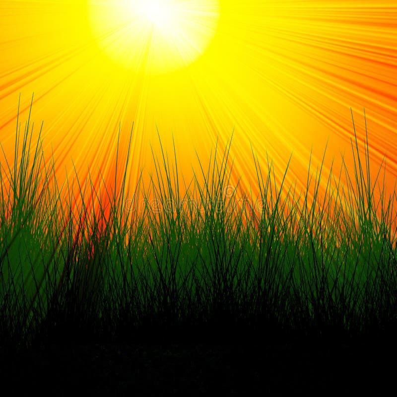 Brinna röd sun med gräs stock illustrationer