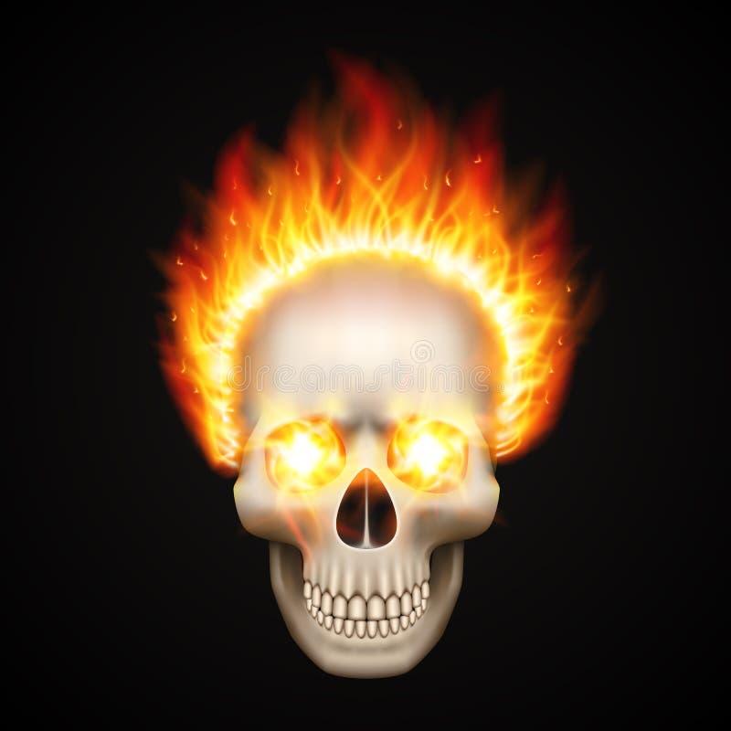 Brinna skalle på svart bakgrund vektor illustrationer