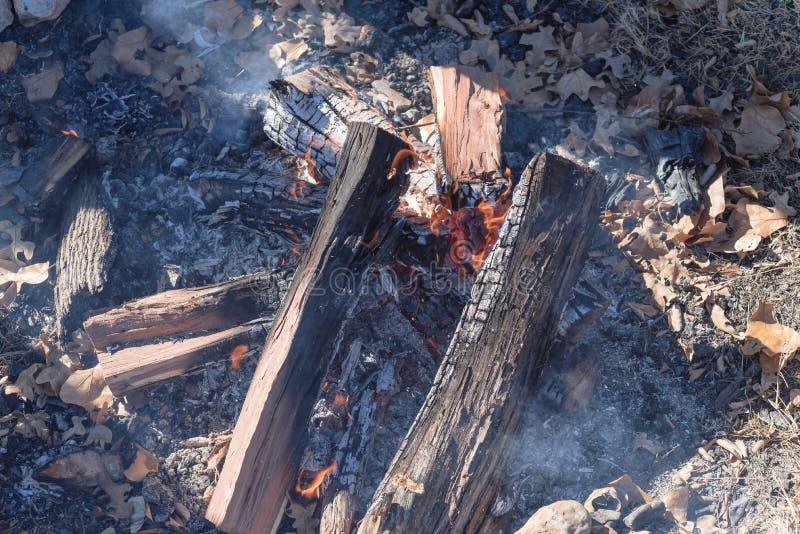 Brinnande brand för närbild på utomhus- lägereld på den soliga nedgångdagen arkivfoto