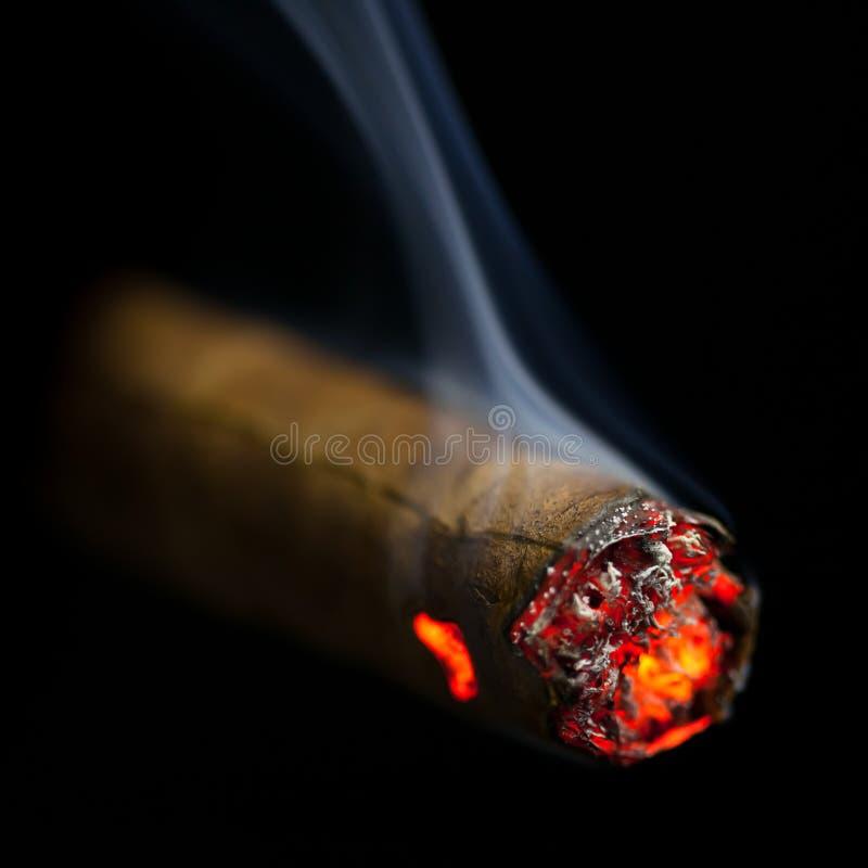 Brinnande cigarr royaltyfri foto
