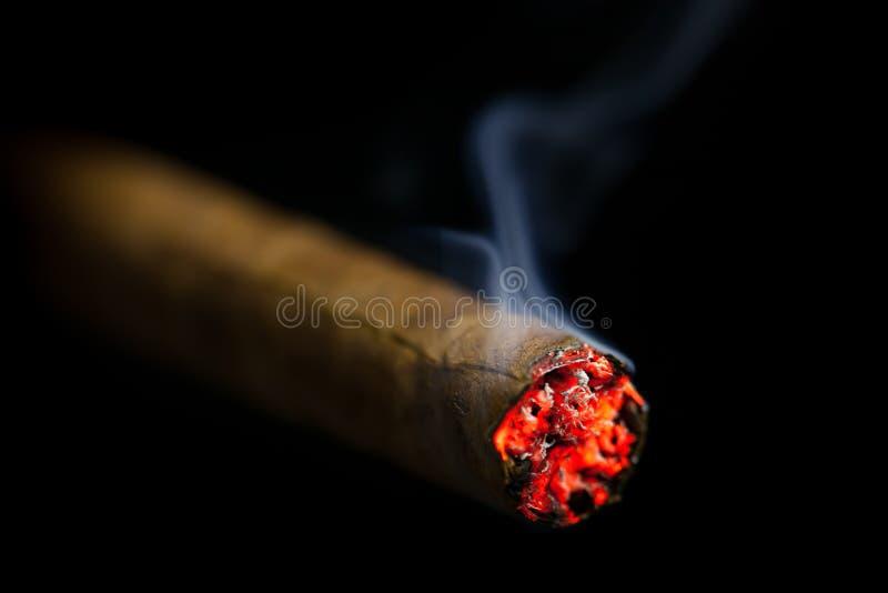 Brinnande cigarr arkivfoton