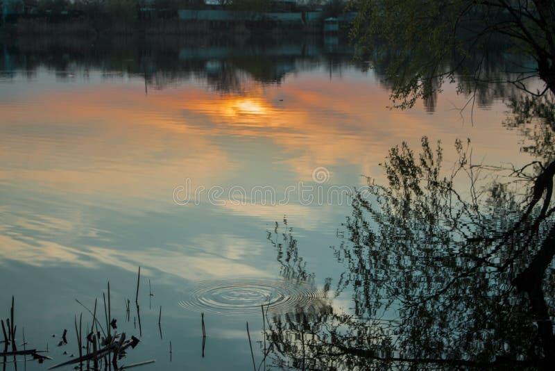 Brinnande solnedgång över byn royaltyfri fotografi