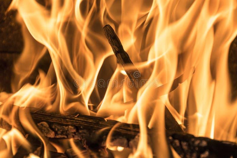 Brinnande vedträ i spisslutet upp, BBQ-brand, brinnande kolbakgrund, grillfestgaller arkivfoto