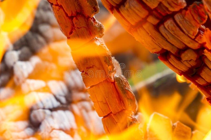 Brinnande vedtränärbild Guling-röd bakgrund av brand och flamman arkivfoto