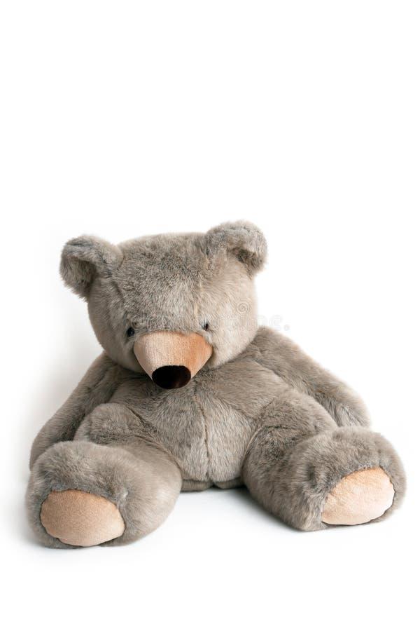 Brinquedo Cuddly imagem de stock royalty free