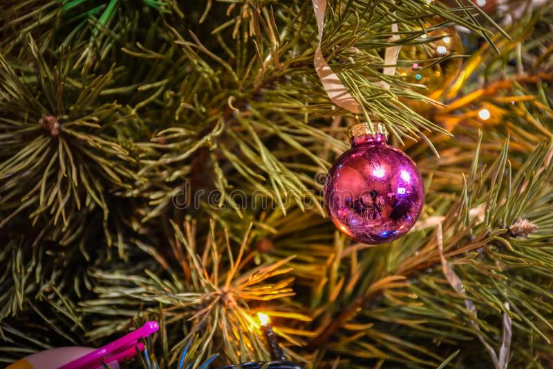 Brinquedo da árvore de Natal em um close-up do ramo fotos de stock royalty free