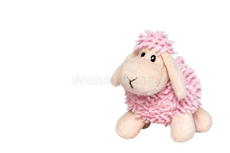 Brinquedo do luxuoso de um cordeiro cordeiro Branco-cor-de-rosa Isolado em um fundo branco fotografia de stock royalty free