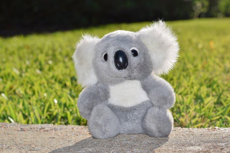 Brinquedo enchido da coala que senta-se na luz do sol morna fora imagens de stock royalty free