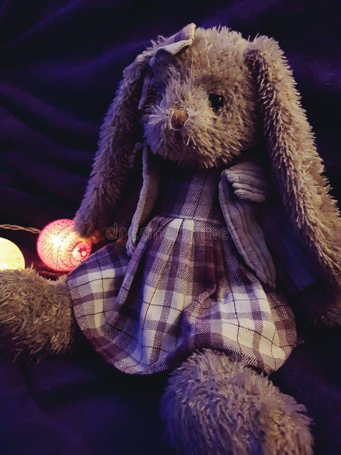 Brinquedo enchido do coelho na luz roxa imagem de stock