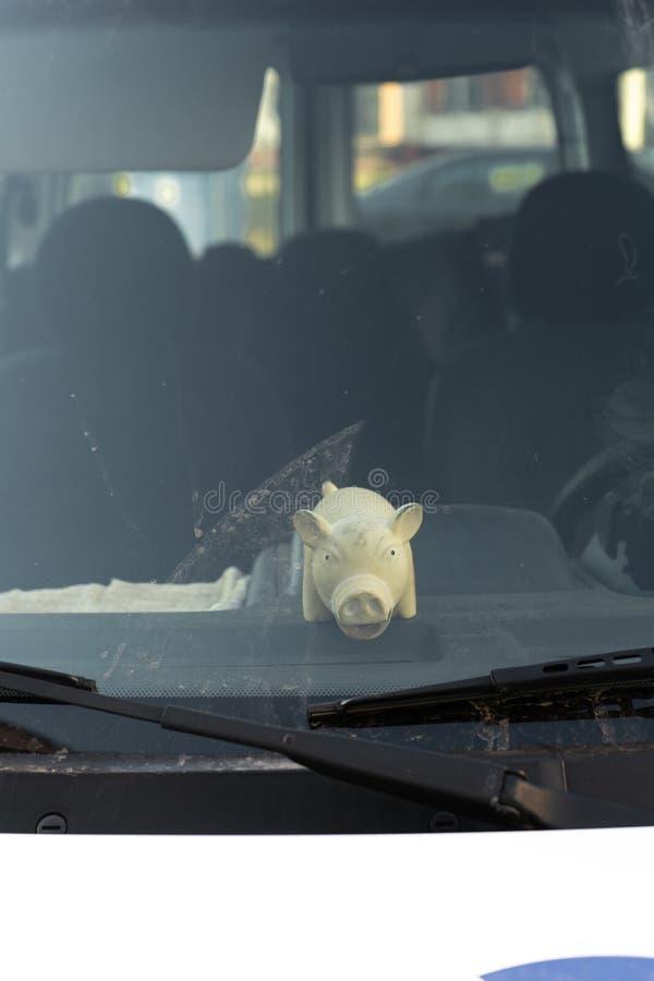 Brinquedo gordo bonito do porco atr?s da janela do para-brisa de um carro fotografia de stock