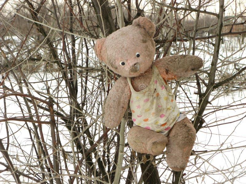 Brinquedo jogado para fora na floresta imagem de stock royalty free