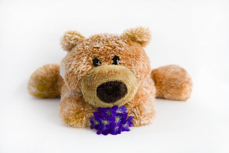 Brinquedo macio o urso imagem de stock