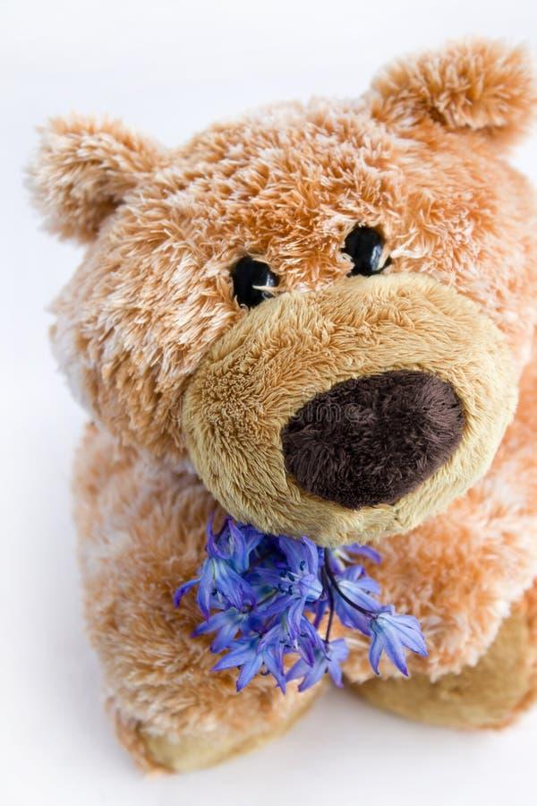 Brinquedo macio o urso fotografia de stock royalty free