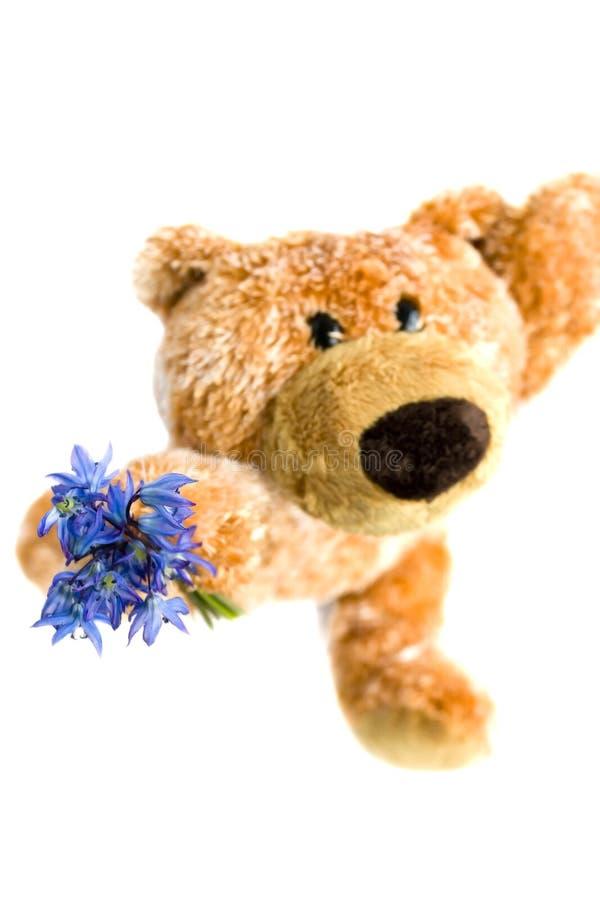 Brinquedo macio o urso imagem de stock royalty free